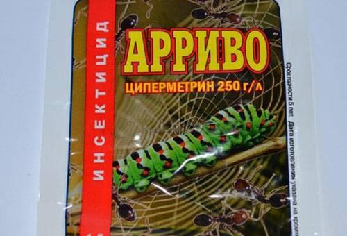 препарат Арриво