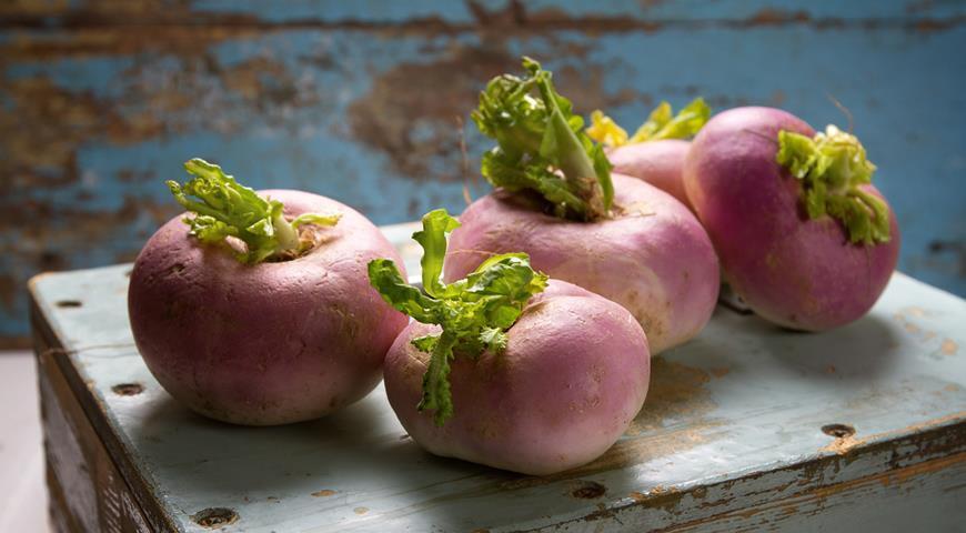 Турнепс овощ
