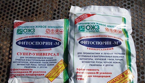 фитоспорин препарат