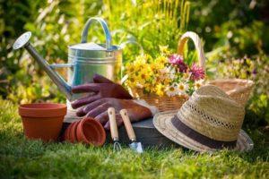 Лунный посевной календарь садовода и огородника на апрель 2019