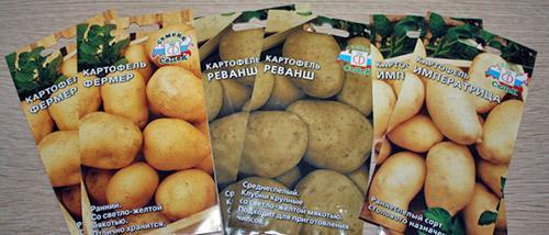 семена картошки