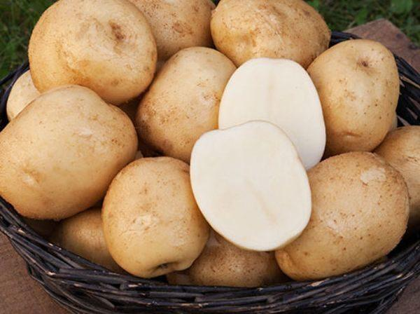 корзинка картошки