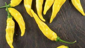 35 лучших сортов острого перца с описаниями и характеристиками