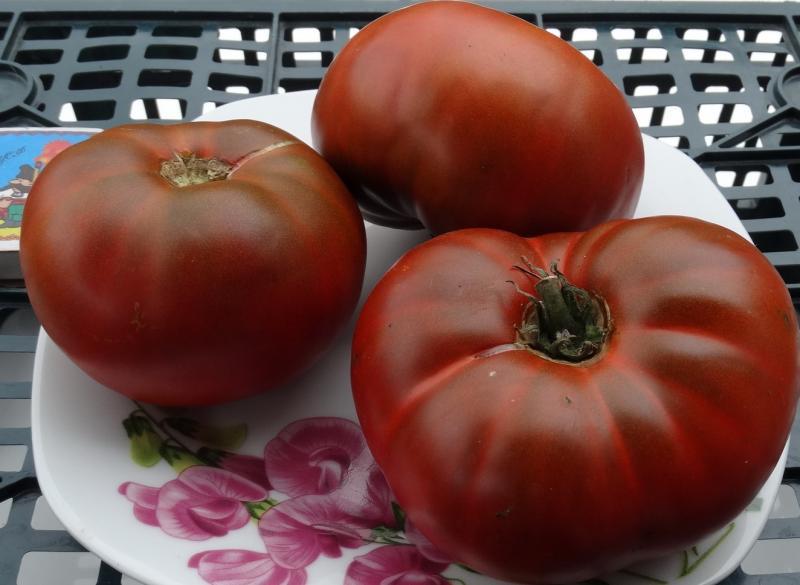шоколадный томат