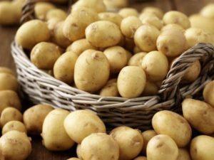 Описание и характеристика сорта картофеля Метеор, правила посадки и ухода