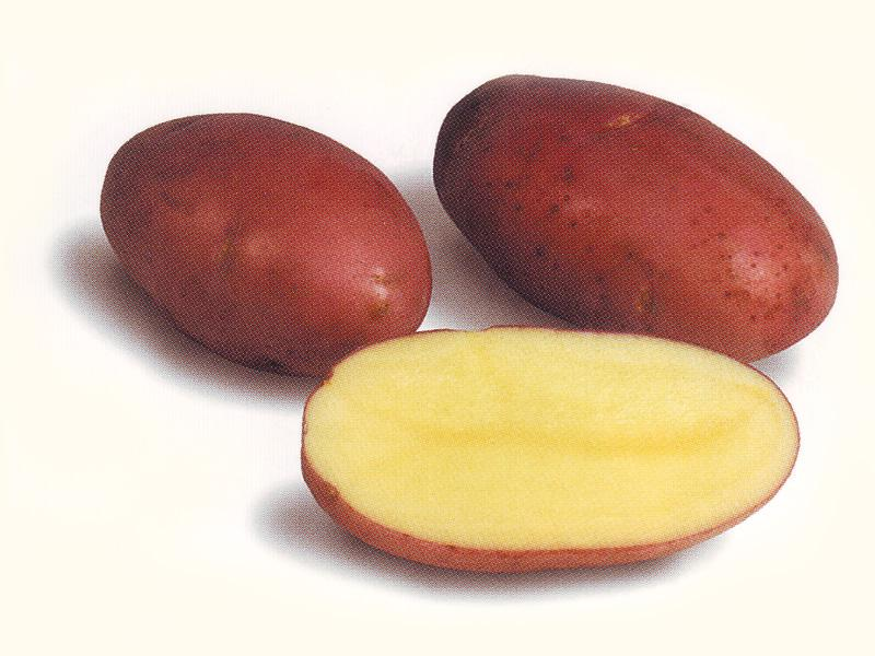 резаная картошка