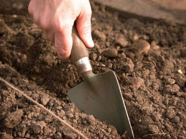 подготовка к почве