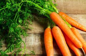 Как часто можно поливать морковь в открытом грунте и когда прекращать