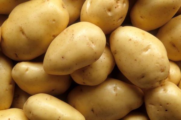 алова картофель