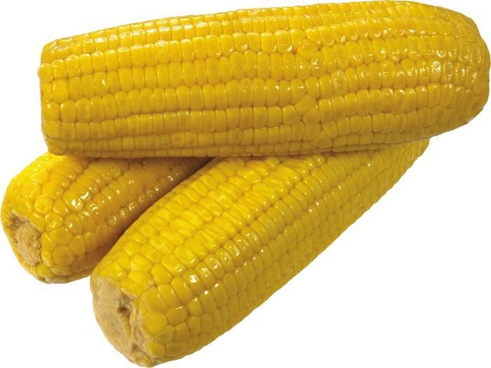 качаны кукурузы