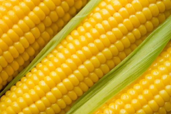 кукуруза спелая