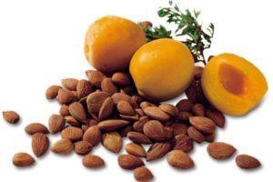 Польза и вред абрикосовых косточек, свойства и противопоказания для организма