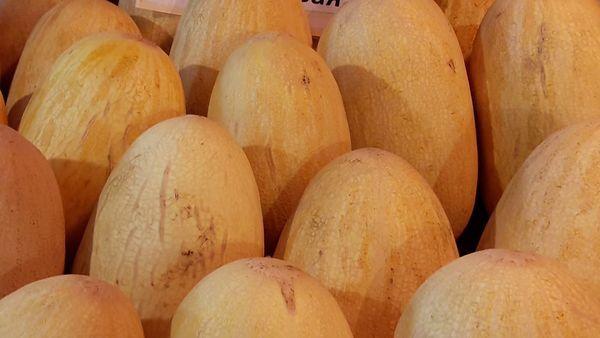 спелые дыни