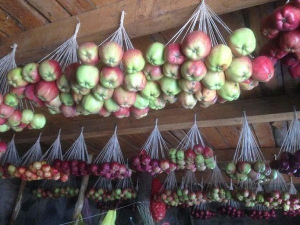 яблоки в сетках