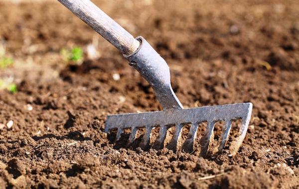 рыхления почвы
