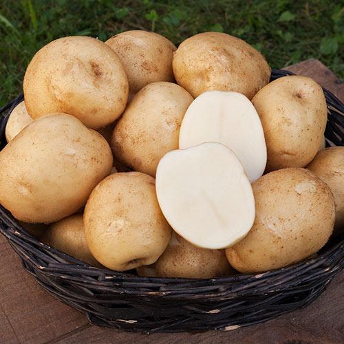 корзина картошки