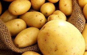 Характеристики и описание картофеля сорта Ривьера, правила посадки и ухода
