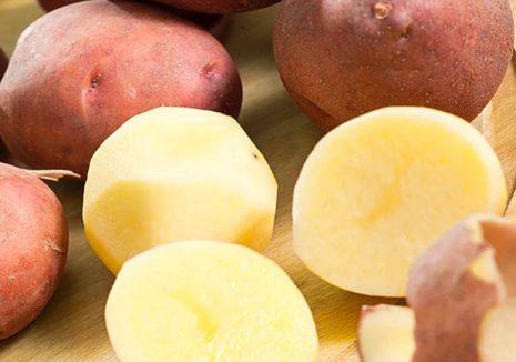 картофель ирбитский