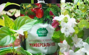 Инструкция по применению органического удобрения «Чудо Плодородие»