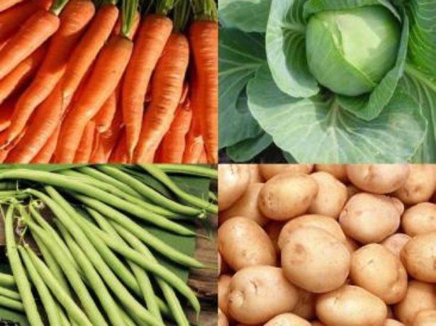 морковь капуста