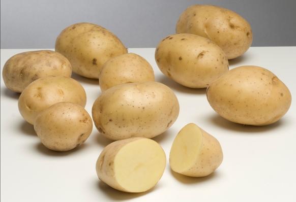биоголд картошка