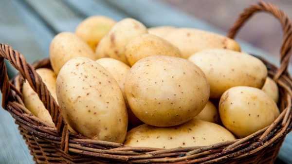 альпинист картошка