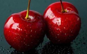 Описание 30 лучших сортов вишни для Подмосковья, посадка и уход