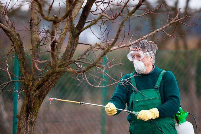опрыскивание корней