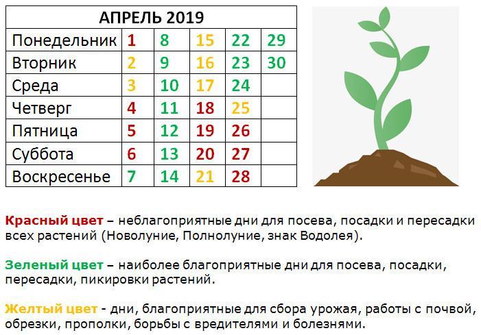 для посева и посадки
