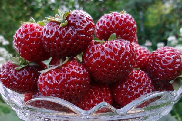 созревшие ягоды