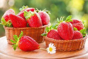 Лучшие сорта и выращивание ремонтантной клубники, подкормка и размножение