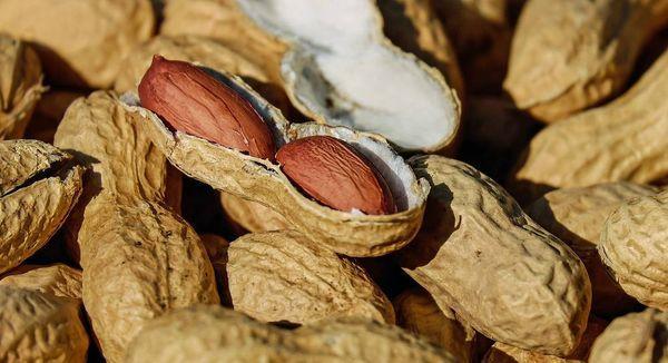 земляные орехи