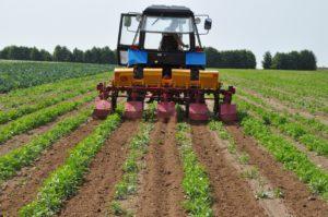 Обзор лучших моделей культиваторов для междурядной обработки почвы, как сделать своими руками