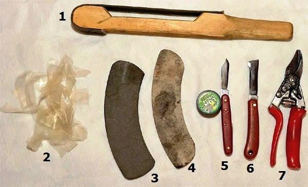 инструменты для привитие