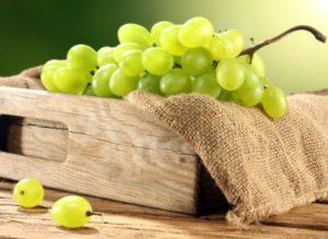 Описание сорта винограда Столетие и советы по выращиванию