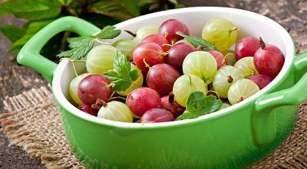 разноцветные ягоды