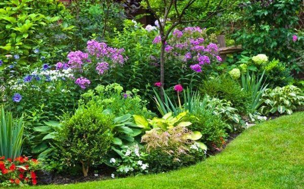 Кусты и цветники