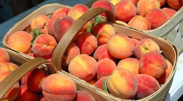 корзины с персиками