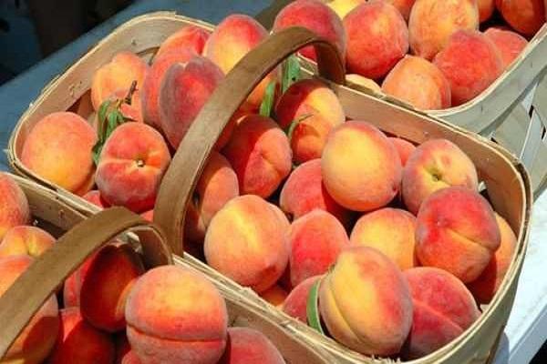 лукошко фруктов