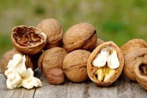 Польза и вред грецких орехов для организма, противопоказания