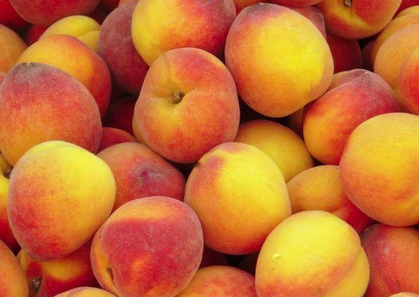 Позднеспелые персики
