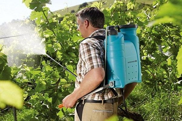 опрыскивают агрохимикатами