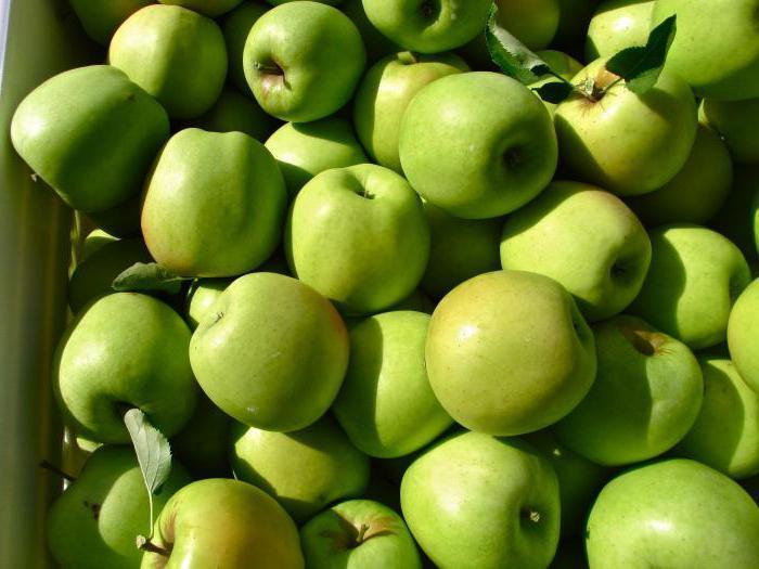 урожай яблок муцу