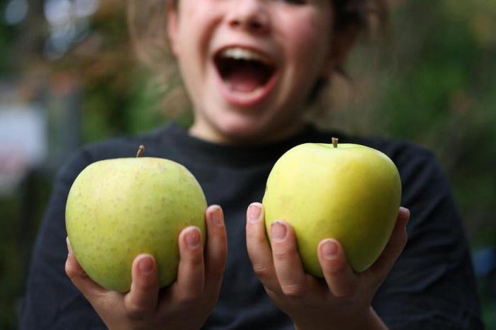 яблоня муцу