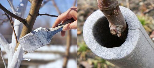 Утепление корней