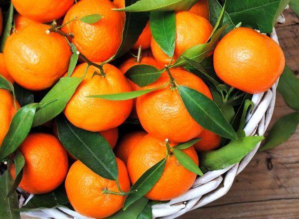 полезные мандарины
