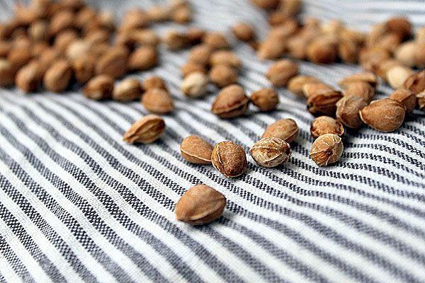 семена черешни