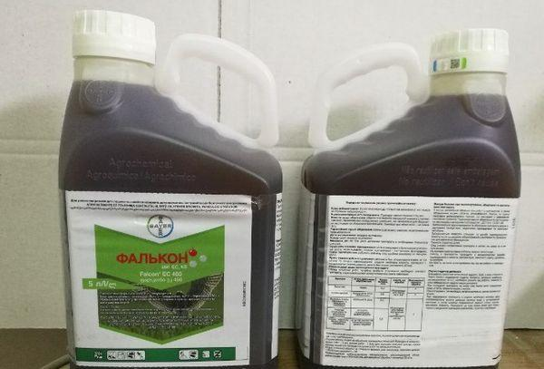 лечение виноградников