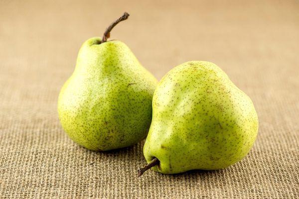 Урожайность груш