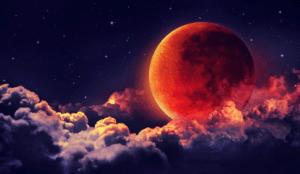 Посадочный лунный календарь огородника на август 2021 года